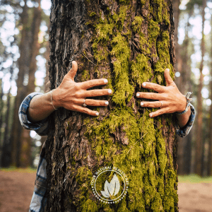 person embracing a tree